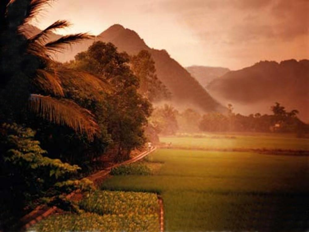 SE XP Vietnam.jpg